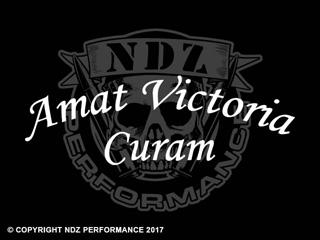 027 - Amat Victoria Curam Arch