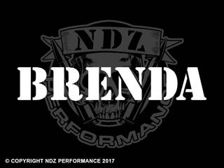1010 - Names Brenda