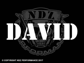 1028 - Names David