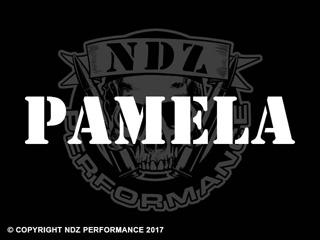 1136 - Names Pamela