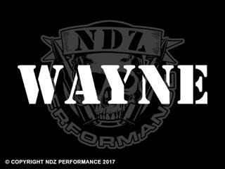 1181 - Names Wayne