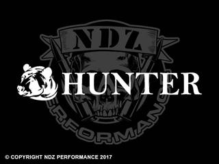 1231 - Bear Hunter 2