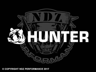 1232 - Bear Hunter 3