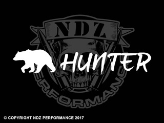 1239 - Bear Hunter 10