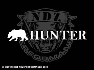 1246 - Bear Hunter 17