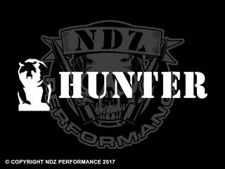 1250 - Bear Hunter 21