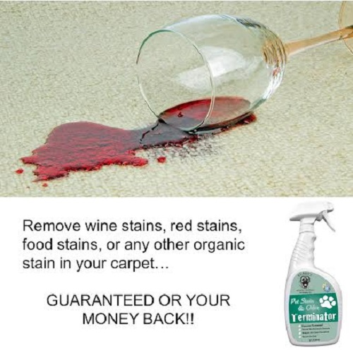 Dog Urine Carpet Stain Removal: Pet Stain & Odor Remover Enzyme Carpet Cleaner Dog